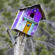 bird house — Photo
