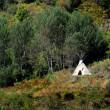 TeePee in Wilderness - Stok fotoraf