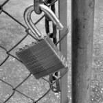 Lock on Gate — Stock Photo #7358910