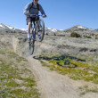 Stock Photo: Mountain Biking