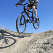 Mountain Biking — Stock Photo #7959861