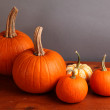 Stock Photo: Small Decorative Pumpkins