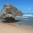 Bathsheba Beach — Stock Photo #6915095