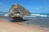 Bathsheba Beach — Stock Photo