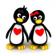 Penguin Couple — Stock Photo #7477542