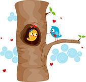 Lovebirds on a Tree — Stock Photo