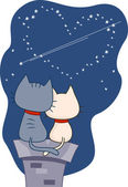 Stargazing Cats — Stock Photo