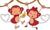 Monkey pár — Stock fotografie