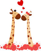 Giraffe Couple — Stock Photo