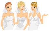 Nevěsty mluví — Stock fotografie