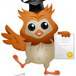 Owl Diploma - Stock Photo