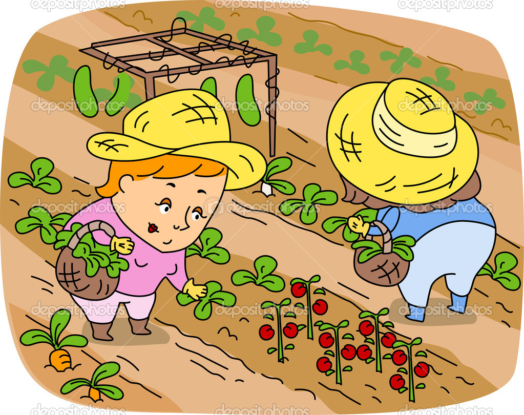 Illustration of Women Picking Vegetables — Stock Photo #7601384