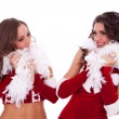 Royalty-Free Stock Photo: Sexy santa women looking at each other