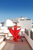 Bailaora de flamenco — Foto de Stock