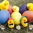 Colored easter eggs on grass lawn — Stok fotoğraf
