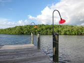 Old wooden boat dock in Naples Florida — Stock Photo