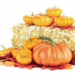 Pumpkins and Hay Bale — Stock Photo #6915001