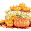 Pumpkins and Hay Bale — Stock Photo