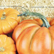 pumpkins — Stock Photo #6915017
