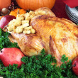 Holiday Turkey Dinner — Stock Photo #7203809