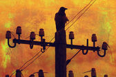 Orange grunge background with crow on the wire — Stock Photo