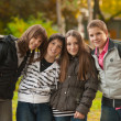 Teenage boys and girls having fun in the park - Stock Photo
