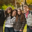 Teenage boys and girls having fun in the park — Stock Photo