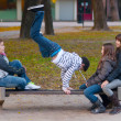 Stock Photo: Teenage boys and girls having fun in the park
