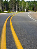 Curved Two Lane Country Road Winding Through a Forest — Stock Photo