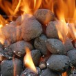 Closeup charcoal barbecue briquettes - Stock Photo