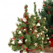 Row of christmas trees — Stock Photo #7574235