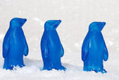 Macro three blue penguins — Stock Photo