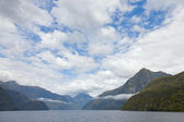 New Zealand fiordland — Stock Photo
