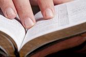 Reading Through the Bible — Stock Photo