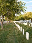 Headstones at National Cemetery — Stock Photo