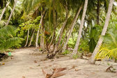 Tropical beach after thunderstorm — Stock Photo
