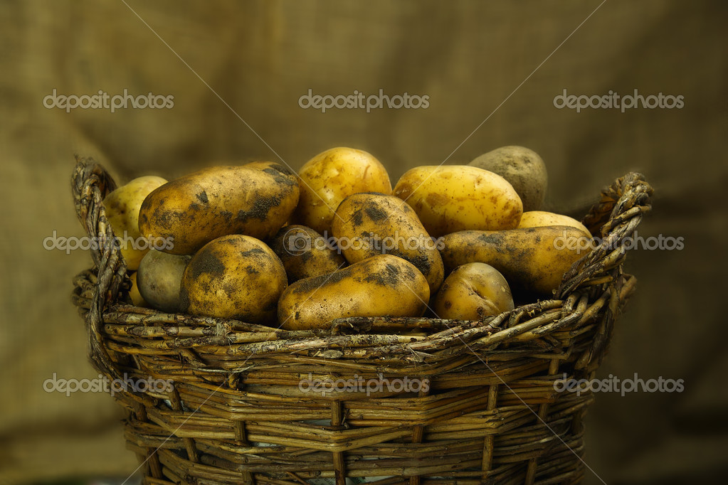 New potatoes in a wicker basket — Stock Photo #6836082