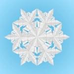 White paper snowflake — Stock Vector
