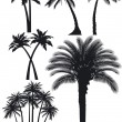 Stock Vector: Palm trees set