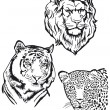 Three Predators, Lion, Tiger, Leopart — Stok Vektör
