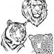 drie roofdieren, Leeuw, tijger, leopart — Stockvector