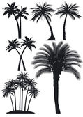 Palm trees set — Stock Vector