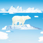 Polar bears and icebergs — Stock Vector