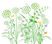 Dandelion and grasses — Stock Vector