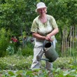 Senior woman working in garden - Stock Photo