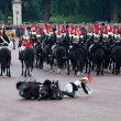 Stock Photo: Horse guard fall