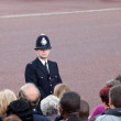 British policeman observes crowd — Stock Photo