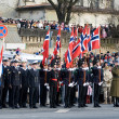Stock Photo: NorwegiHonour Guard at Military parade