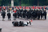 Horse guard fall — Stock Photo