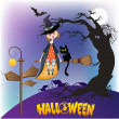 Halloween witch background — Foto Stock